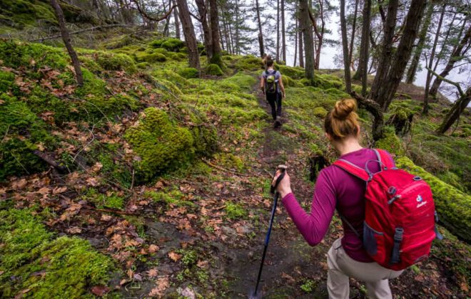 Find the best hiking trails on Vancouver Island, here in the Cowichan Valley.